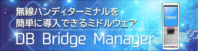 DB Bridge Manager